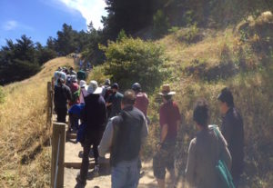 Hikers going up hill